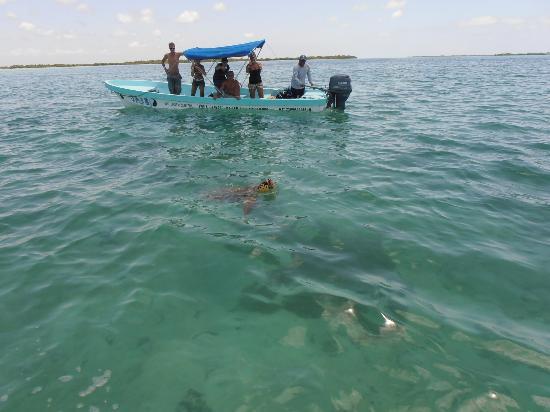 Diversity Diving: Dit was bij een andere excursie maar deze zie je dan dus.