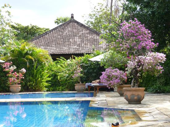 Matahari Beach Resort & Spa: The swimming pool