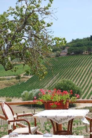 Ristorante Podere Le Vigne: The view