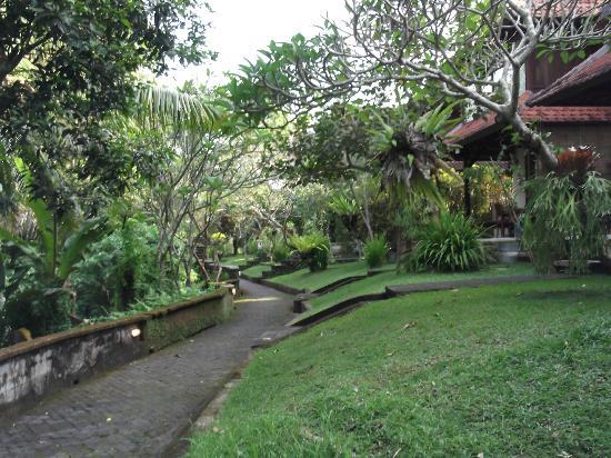 Abangan Bungalow: Jardin