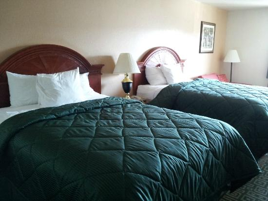 James Manor : Clean new beds & comforters