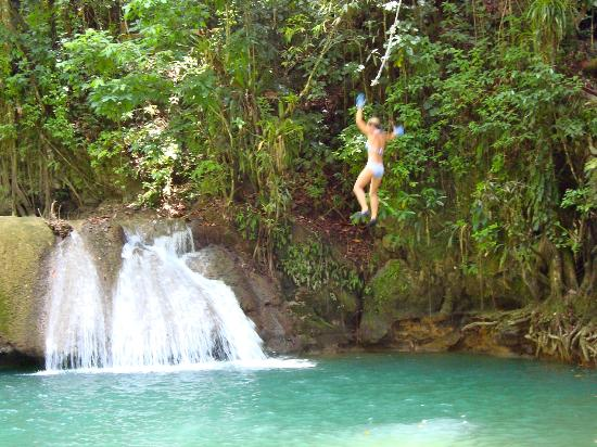 Talk of the Town Tours : YS Falls rope swing