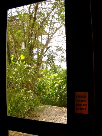 "Rainforest Inn: Door to back porch...your gateway to ""heaven"""