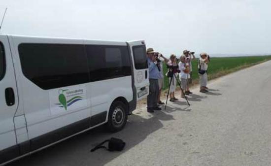 Valencia Birding Birdwatching Tours
