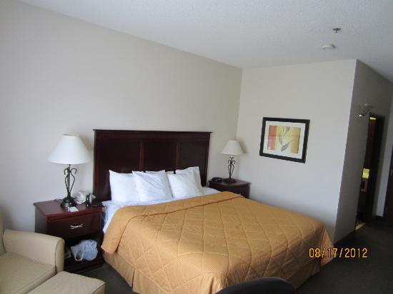 Comfort Inn & Suites Market Center: king suite