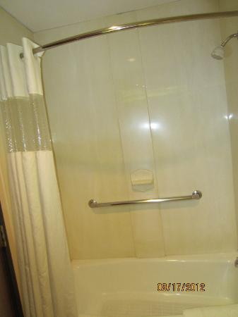Comfort Inn & Suites Market Center: shower