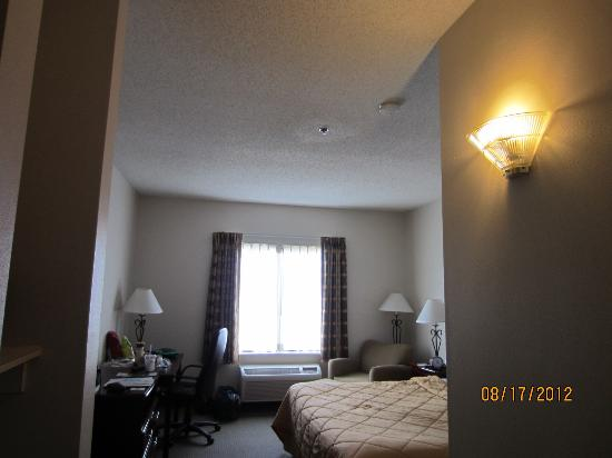 Comfort Inn & Suites Market Center: the room-KING suite
