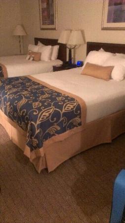 溫德姆溫蓋特國際飯店照片