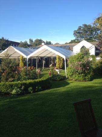 Beaufield Mews: the garden