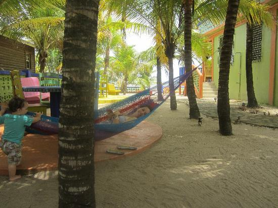 The hammock under the coconut trees was a big hit.