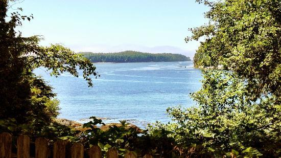 Duffin Cove Oceanfront Lodging: View from our patio
