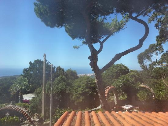 Quinta Colina Flora: View from our room