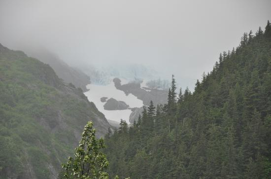 Willawaw Nature Trail: One of the Trail of Blue Ice glaciers from the trail