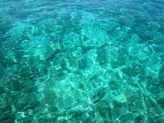 Paleokastritsa Beach: paleokastritsa