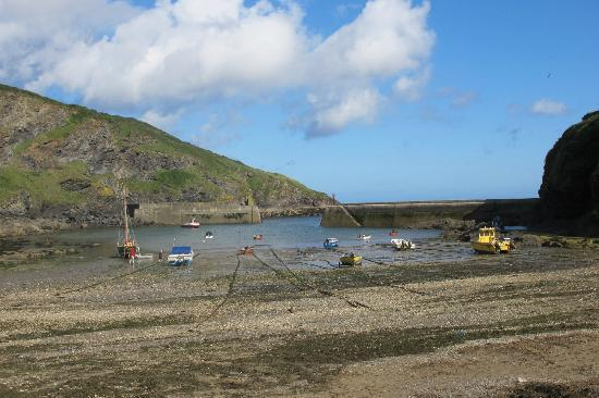 Slipway Hotel: Port Isaac at low tide