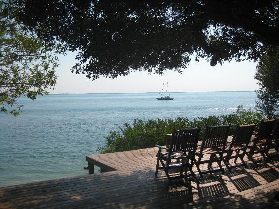 Rio Azul Lodge: Deck overlooking the estuary mouth!!