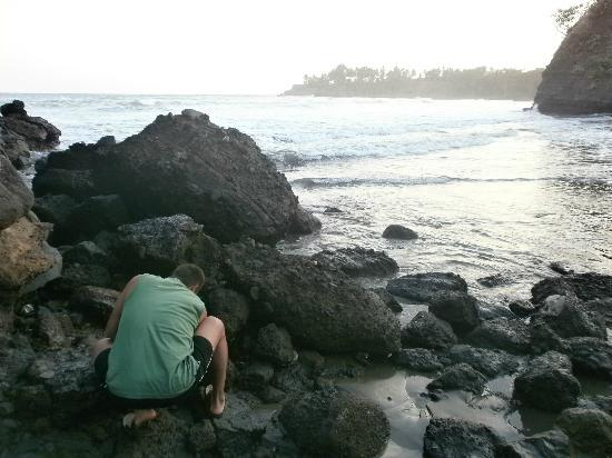 Hotel Miraflores: Looking for crabs in the tidal pools.