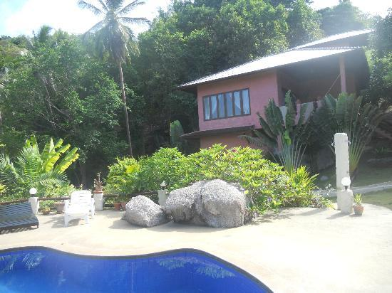 The Rocks Villas : Depuis la piscine