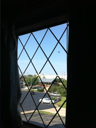 Windmill Inn & Suites: View of Hotel Grounds