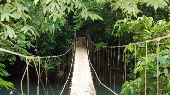 Hotel Casa Horizontes Corcovado: Bridge Aguitas