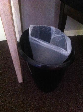 Hotel de La Cloche: Why put a half size bin liner in a bin?