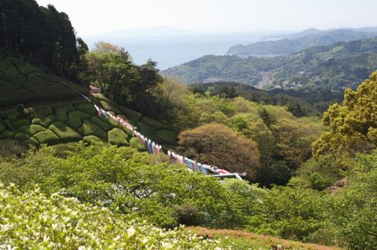 Atami, Japan: 姫の沢公園より大島を