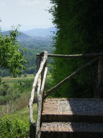 Fattoria Maionchi: View from vineyard