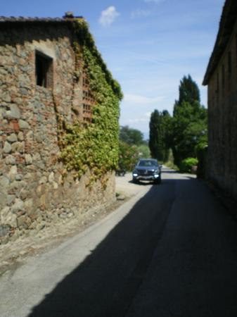 Fattoria Maionchi: Vineyard private road