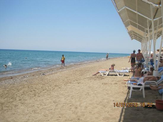 TUI Magic Life Belek: beach