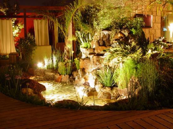 Chilaquiles Rojoslargejpg fotografa de Bistro Garden Torreon