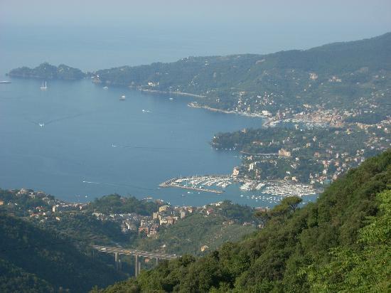 Santuario di Montallegro : Golfo di Rapallo visto dal Santuario