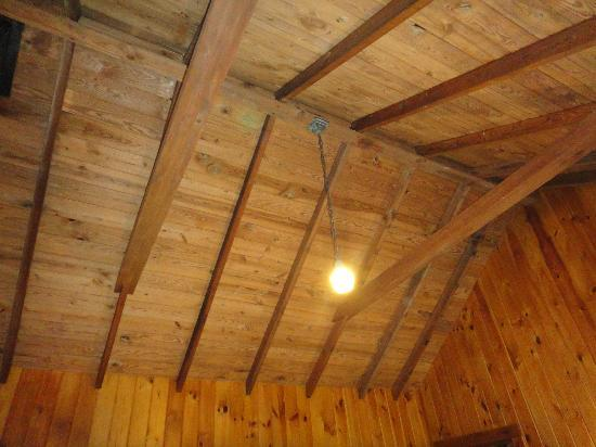Gilbert Lake State Park: ceiling view