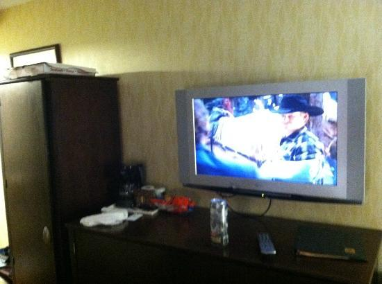 Lexington Inn at JFK Airport: TV