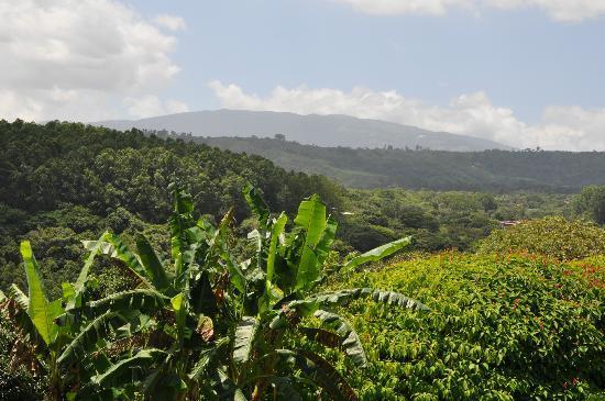 Vista Linda Montaña: Aussicht auf die Berge