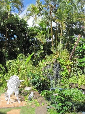 Eva Villa: Garden