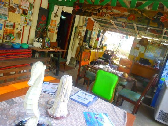 Walaba Hostel & Beach Houses: reception area