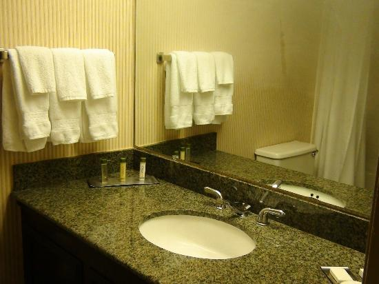 DoubleTree by Hilton Hotel Newark Airport : Bathroom in our room