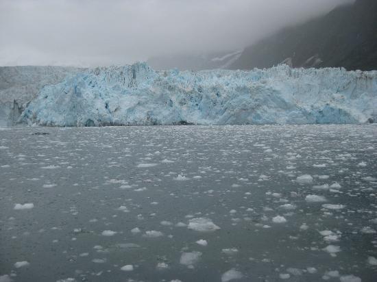 Major Marine Tours Surprise Glacier