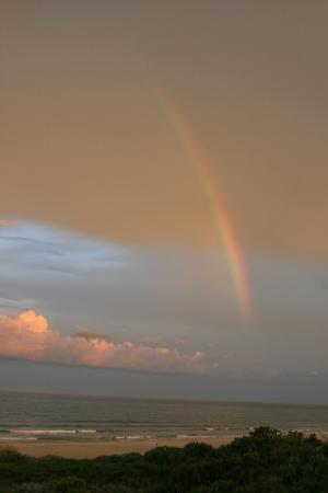 The Resort on Cocoa Beach: Rainbow