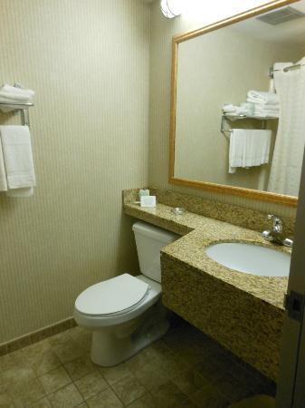 Comfort Inn Mercer: Bathroom