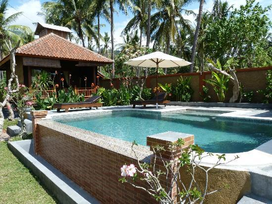 Citra Lestari Cottages: Piscine