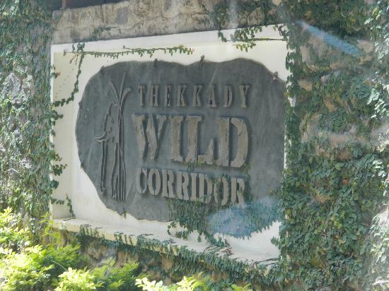 Wild Corridor Resort and Spa by Apodis: Entrance