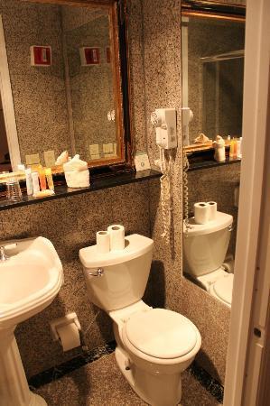 فندق دافنشي: Banheiro 