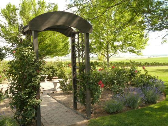 Sawtooth Winery: Fragrant Rose and Lavender Garden