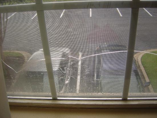 Extended Stay America - Memphis - Sycamore View: Cracked window and torn screen