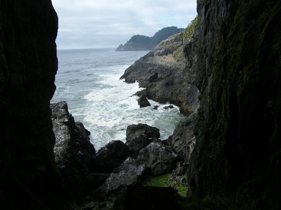 Sea Lion Caves - looking out from cave