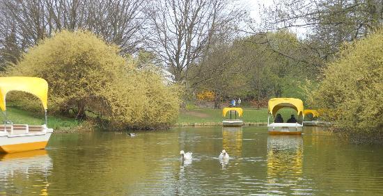 Gondola Ride Picture Of Luisenpark Mannheim Mannheim TripAdvisor