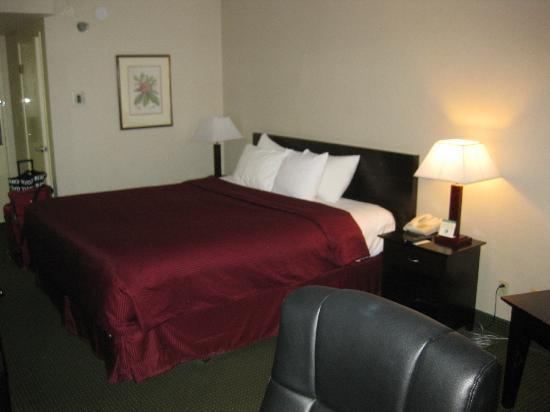 Clarion Hotel: king bed