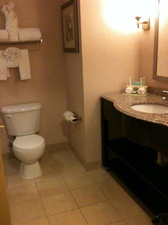 Holiday Inn Express Baltimore-Downtown: HIE Bathroom