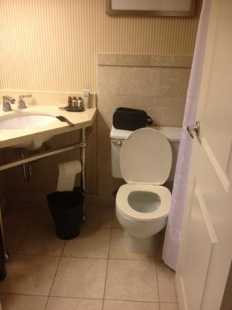 Sheraton Westport Chalet Hotel St. Louis : Cramped bathroom